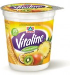 Vitaline yoghurt dessert  with pieces of Tropical Fruits-Cereals 0% fat, 380g